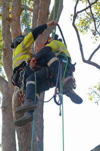 attaching climber to rescurer