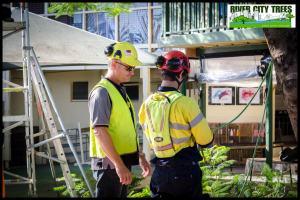 Tree Services Training